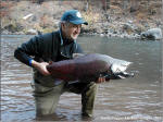 Klickitat River Chinook Salmon