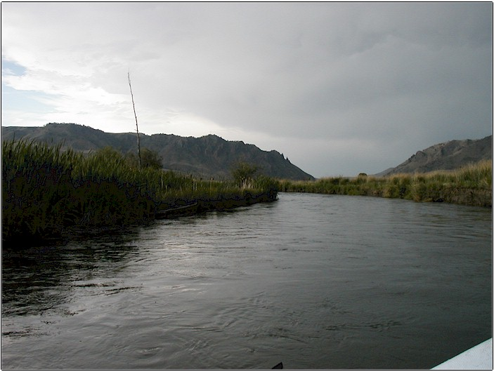 Montana fly fishing 2002 for Beaverhead river fly fishing