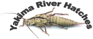 Yakima River Hatches