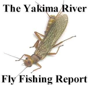 The Yakima River Fly Fishing Report....Worley-Bugger Fly Co. Your Complete Yakima River Outfitter!