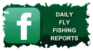 Daily Fly Fishing Reports From WBFC On Facebook